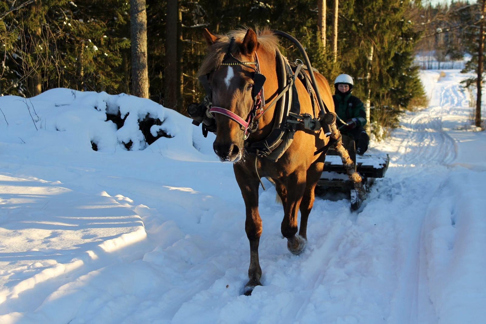 Ravivalmennusta Etelä-Suomessa