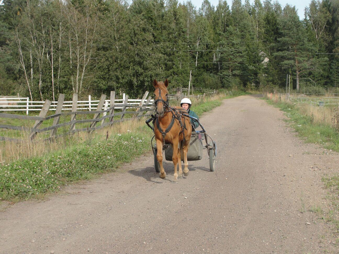 Varsan ajo-opetus